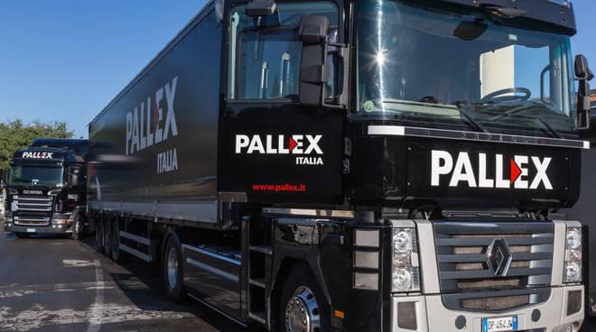 pallex4