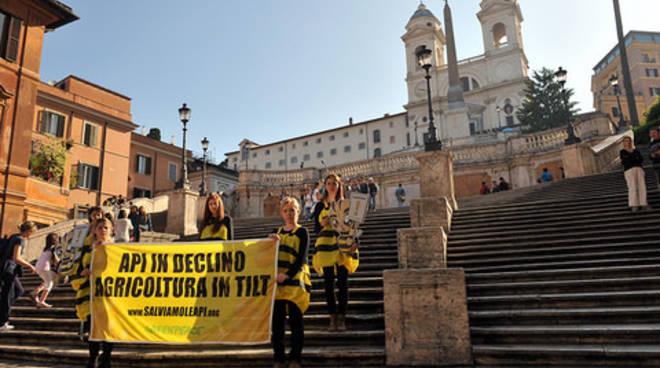 Greenpeace Api Roma