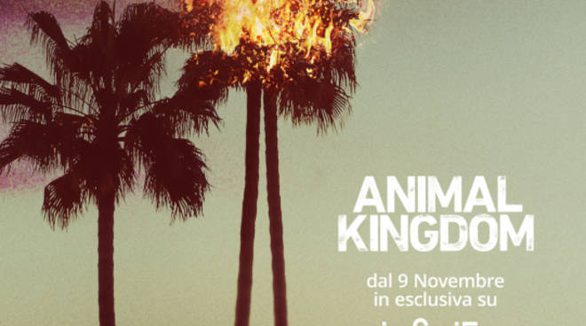 animalkingdom_keyart