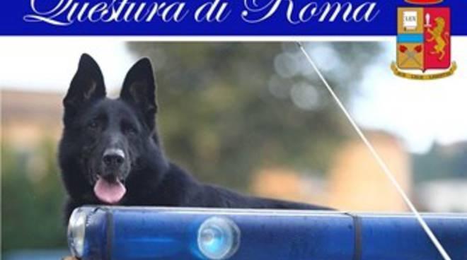Cronaca di Roma - Yago cane poliziotto