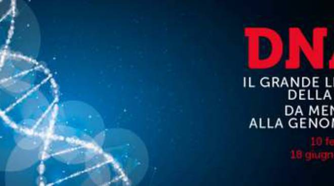 Eventi Roma - PdE DNA