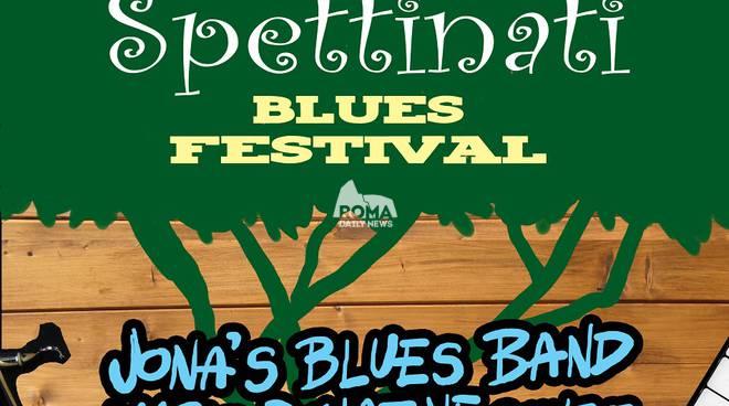 Pinispettinati Blues Festival: sul palco Jona\'s Blues Band, Mario Donatone Quintet, Muddy Roosters