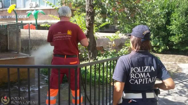 Roma - Lotta al degrado