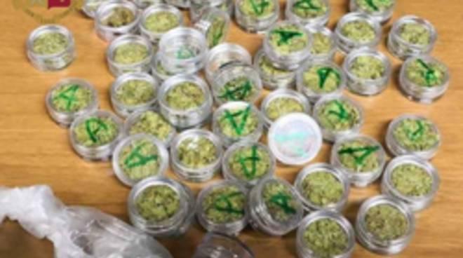 Anti droga