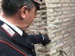 Scritta sul Colosseo
