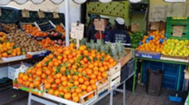 Frutteria Montemario