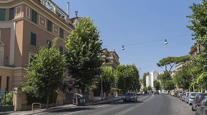 Municipio XIV - Balduina