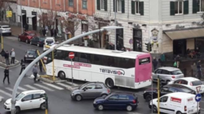 bus turistico contro pedone