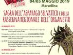 9^ Edizione della Sagra dell\'Asparago Selvatico e  della Rassegna Regionale dell\'Organetto