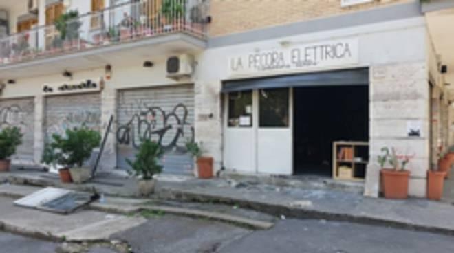 donazioni Pecora Elettrica