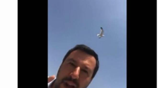 Matteo Salvini 12-06-19