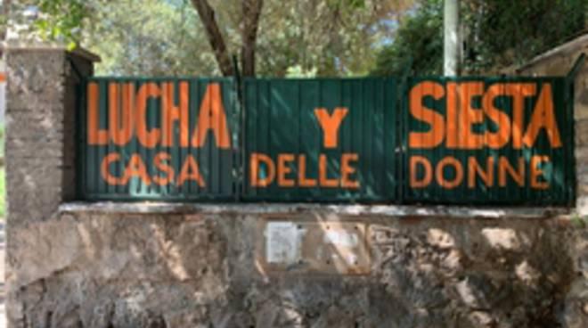 Lucha Y Siesta