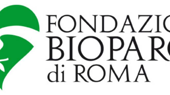 fondazione bioparco