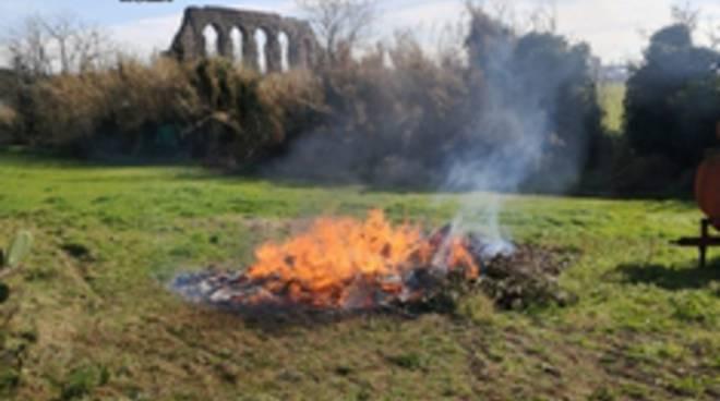 rifiuti speciali bruciati