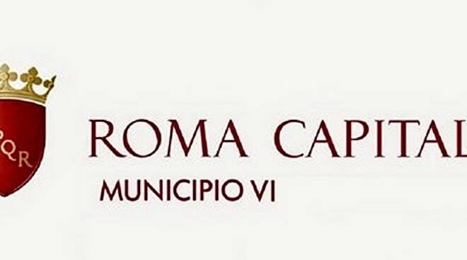 municipio 6
