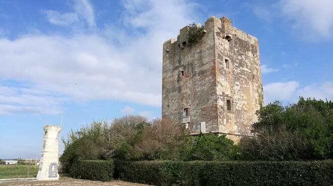 torre perla palidoro