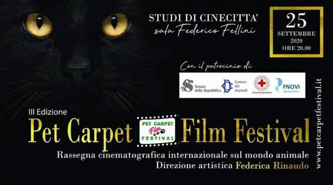 Pet Carpet Film Festival 2020