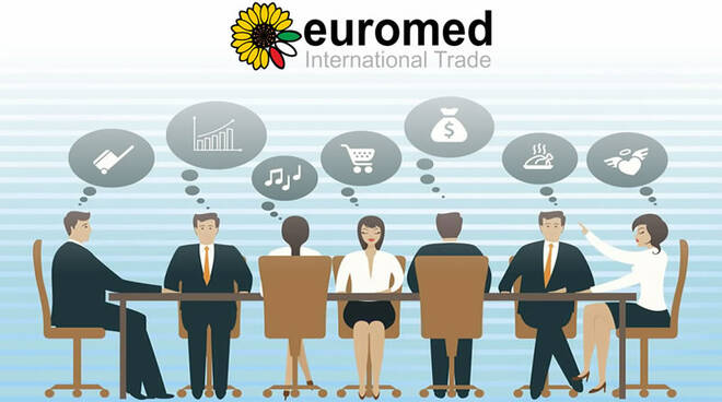 team_euromed_international_trade